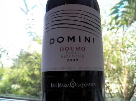 Domini Douro Portugese Red Wine Review