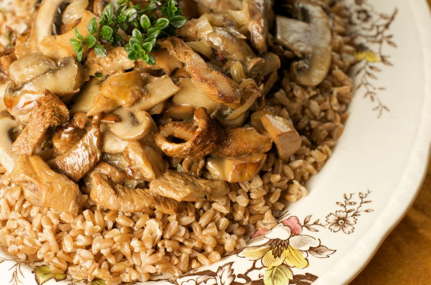 festive mushroom ragout ragout is just a fancy term for something that ...