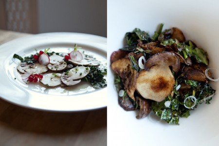 Porcini Mushrooms: Bringing Sexy Back