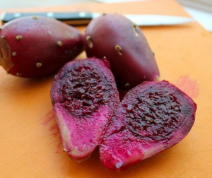 The Other Tuna: Prickly Pear Cactus Fruit