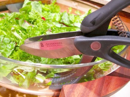 Salad Shears: Is There a Point?