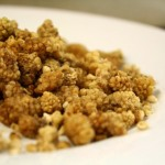 Tips for Cooking With Dried Mulberries