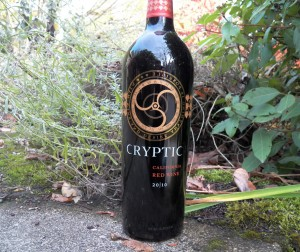 Cryptic 2010 Red Wine