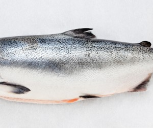 Ora King Salmon: A New Way of Premium, Sustainable, Salmon Farming