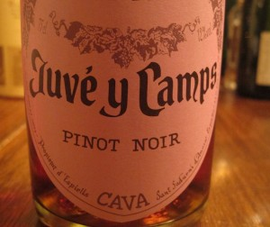 Juve y Camps Brut Rose Cava